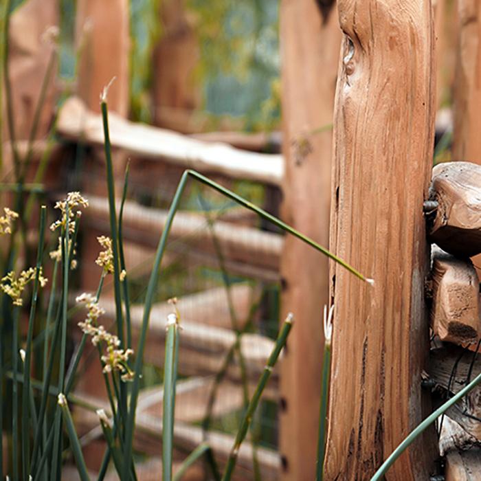 Disneyland Adventure land fence by river. Photoshop fix