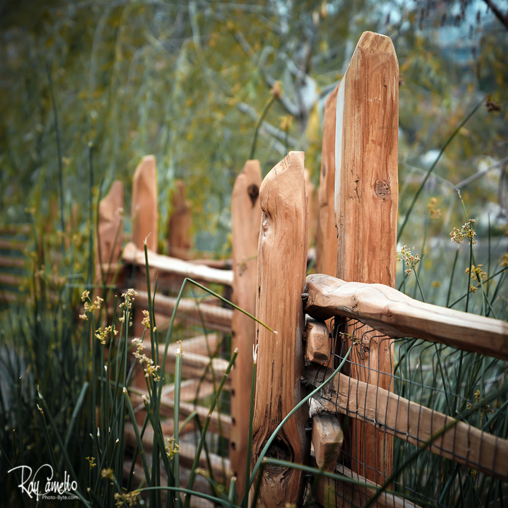 Disneyland Adventure land fence by river. Photoshop fix